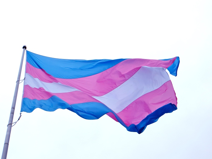 NZ political parties' transgender health plans